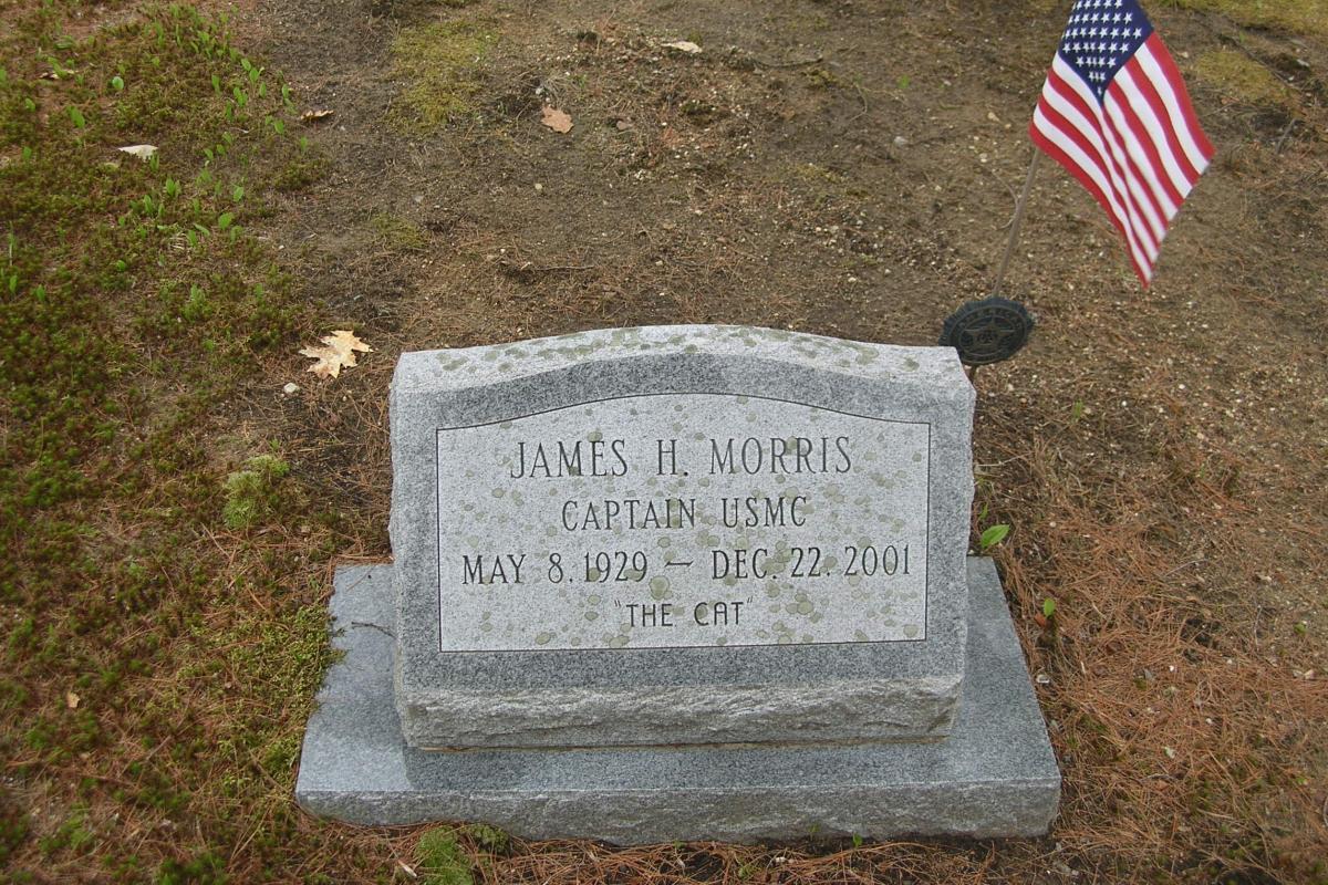 Korean War and Vietnam War Soldier - Hawkins Cemetery